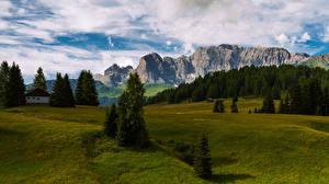 Фотографии Италия Гора Пейзаж Альпы Дерево South Tyrol, Catinaccio Природа
