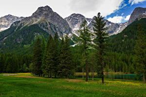 Обои для рабочего стола Италия Гора Альп Дерева Облака Trentino-Alto Adige Природа
