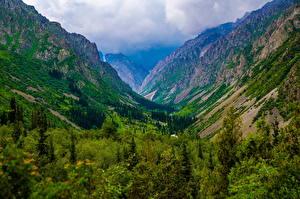 Обои Гора Парк Облачно Ala Archa National Park, Kyrgyzstan