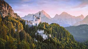 Обои Нойшванштайн Горы Лес Замки Германия Бавария Природа