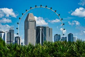 Картинка Сингапур Небоскребы Трава Колесо обозрения Flyer город