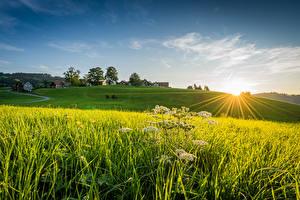 Обои Швейцария Поля Дома Рассветы и закаты Лучи света Linner Linde Природа картинки