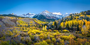 Фото Америка Осенние Горы Пейзаж Панорама Mount Sneffels Природа