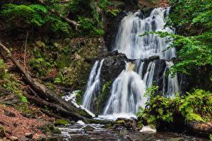 Фотография Водопады Камни Осенние Мхом